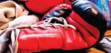 Bokshandschoenen