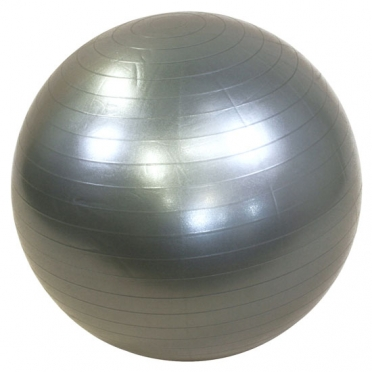 Lifemaxx Gymbal 55 cm zilver LMX 1100.55